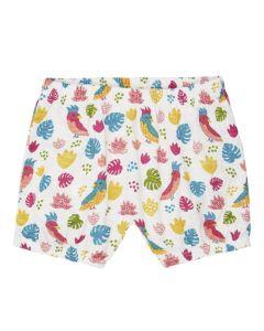 MAYA Bloomer Baby Shorts Parrots